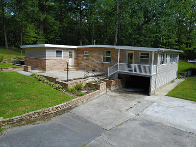 Meigs County, Rhea County, Roane County Single Family Home For Sale: 750 Eagle Point Drive