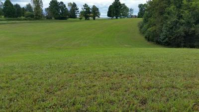 Greenback Residential Lots & Land For Sale: Sinking Creek Rd