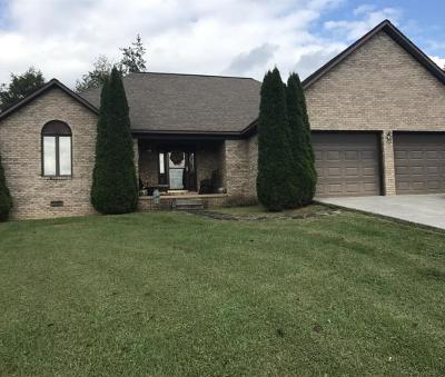 Andersonville, Maynardville, Speedwell, Sharps Chapel Single Family Home For Sale: 378 Watson