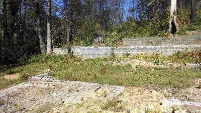 Gatlinburg Residential Lots & Land For Sale: 1005 Old Cartertown Rd