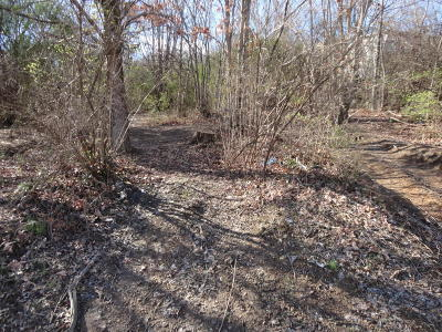 Knoxville Residential Lots & Land For Sale: NW Johnston St