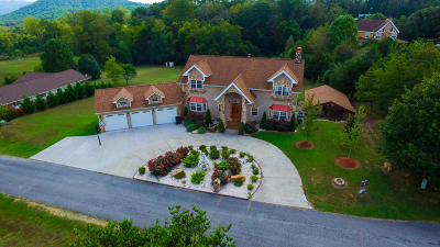 Sevierville Single Family Home For Sale: 2206 Rogers Place