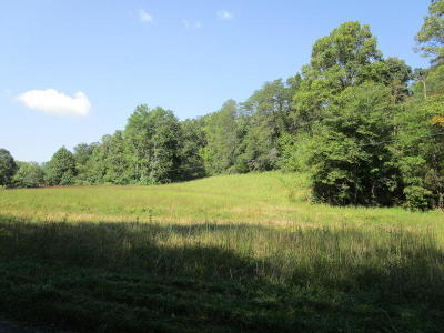 Blaine Residential Lots & Land For Sale: Lea Lakes Rd