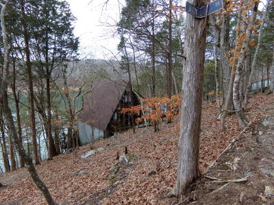 Speedwell TN Single Family Home For Sale: $174,900