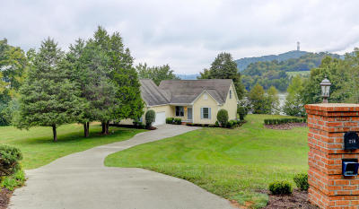Knoxville Single Family Home For Sale: 276 Henderson Bend Rd