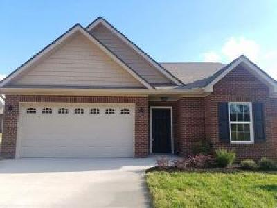 Knoxville Single Family Home For Sale: 5430 Laurel Creek Way