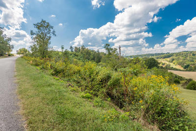 Campbell County Residential Lots & Land For Sale: Lot 16 Deer Hill Lane