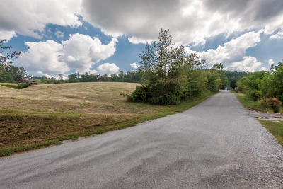 Campbell County Residential Lots & Land For Sale: Lot 17 Deerfield Way