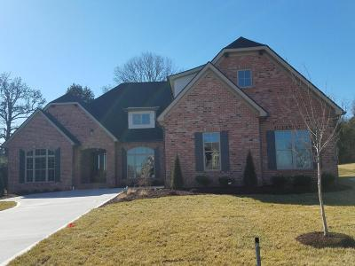 Knoxville Single Family Home For Sale: 1434 Turning Leaf Lane