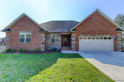 Knoxville Single Family Home For Sale: 6250 Mountain Rise Drive