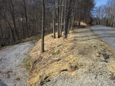 Gatlinburg Residential Lots & Land For Sale: 628 Pinecrest Drive