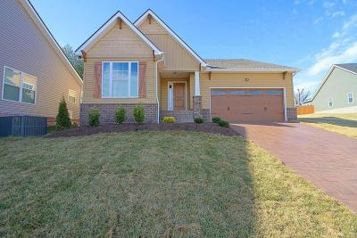 Knoxville Single Family Home For Sale: 2709 Clay Top Lane