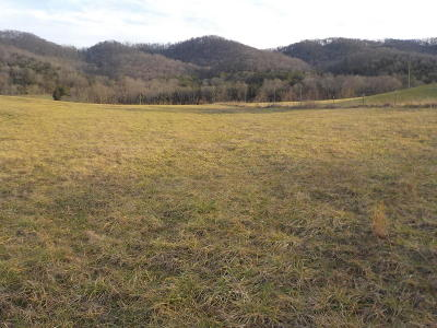 Grainger County Residential Lots & Land For Sale: 4631 Rutledge Pike