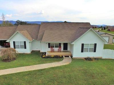Maryville Single Family Home For Sale: 3524 McGhee Rd