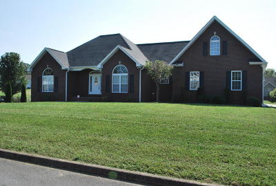 Sevierville Single Family Home For Sale: 1870 River Vista Circle