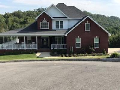 Tazewell Single Family Home For Sale: 132 Champion Court