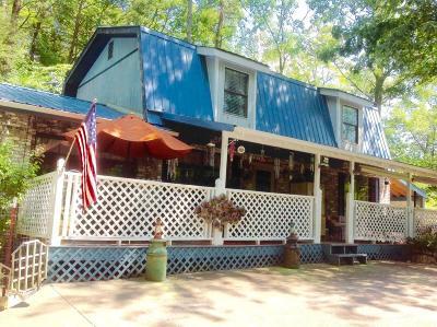 Sevierville Single Family Home For Sale: 408 Hemlock Lane