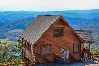 Sevierville Single Family Home For Sale: 2218 Towering Hemlock Drive