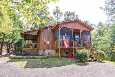 Sevierville Single Family Home For Sale: 831 S New Era Rd