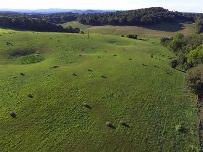 Jefferson City Residential Lots & Land For Sale: E Old Andrew Johnson Hwy