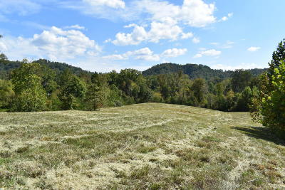 Maryville Residential Lots & Land For Sale: 132 Martingale Way