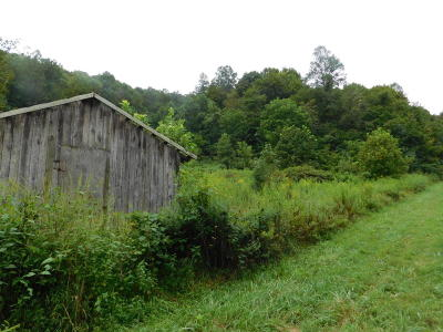Speedwell TN Residential Lots & Land Pending - Continue To Show - F: $74,900