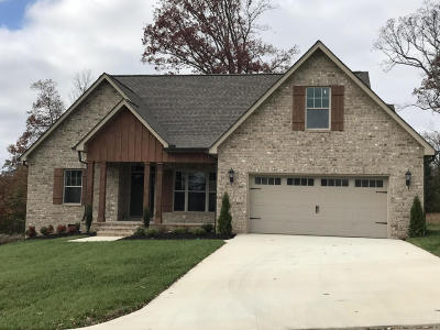 Lenoir City Single Family Home For Sale: 498 Britts Drive