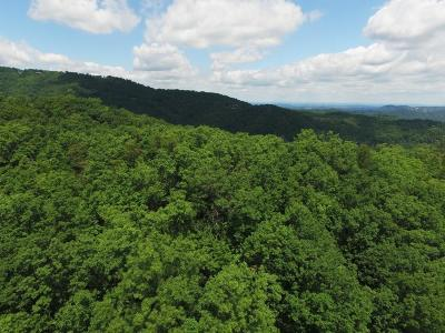 Gatlinburg Residential Lots & Land For Sale: Wiley Oakley Drive