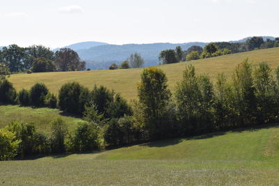 Grainger County Residential Lots & Land For Sale: Lot 25 Howerton Estates Rd