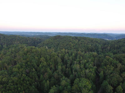 Heiskell Residential Lots & Land For Sale: 153 Foust Hollow Rd