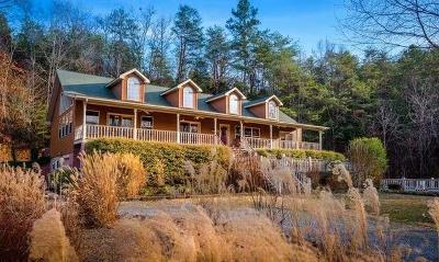 Sevierville Single Family Home For Sale: 665 Gists Creek Rd