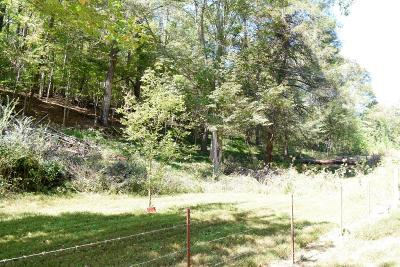 Rocky Top Residential Lots & Land For Sale: Echo Valley Rd