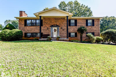 Rockford Single Family Home For Sale: 206 Littlebrook Circle
