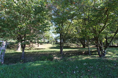 Claiborne County Residential Lots & Land For Sale: 186 Carey Rd