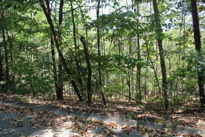 Hamblen County Residential Lots & Land For Sale: 961 Cordell Hull Drive