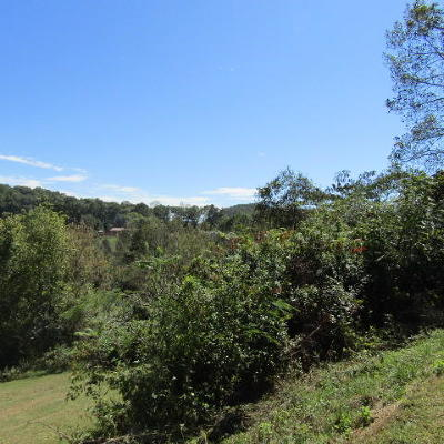 Campbell County Residential Lots & Land For Sale: Chambers Rd