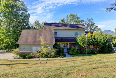 Tazewell Single Family Home For Sale: 207 Wedge Way Way