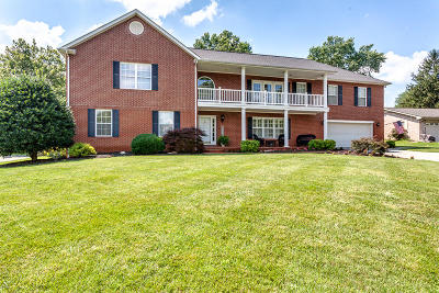 Knoxville Single Family Home For Sale: 9313 Briarwood Blvd