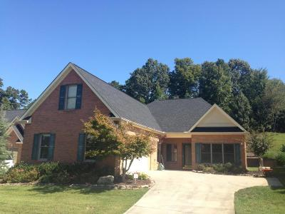 Lenoir City Single Family Home For Sale: 180 Valleyview Drive