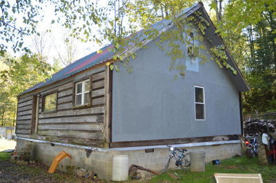 Briceville Single Family Home For Sale: 5631 New River Hwy