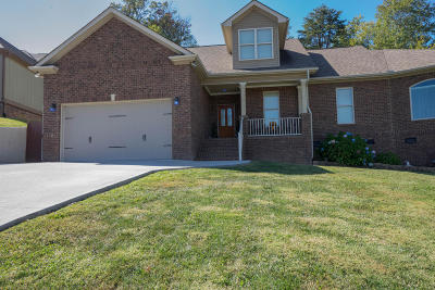 Corryton Single Family Home For Sale: 7449 Openview Lane