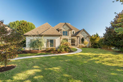 Knoxville Single Family Home For Sale: 9232 Linksvue Drive