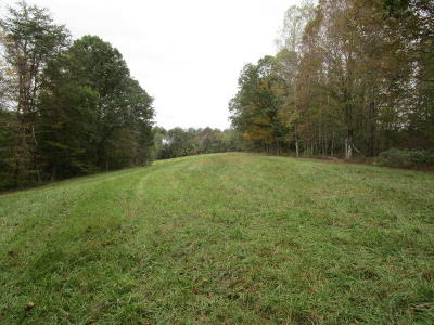 Grainger County Residential Lots & Land For Sale: 5100 Tater Valley Rd