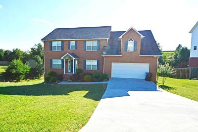 Knoxville Single Family Home For Sale: 1865 Falling Waters Rd