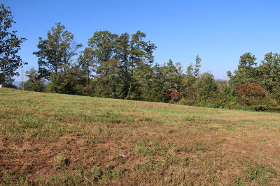 Campbell County Residential Lots & Land For Sale: 10 Old Hearth