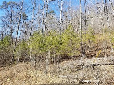 Residential Lots & Land For Sale: Lot 816 Wildcat Hollow Rd