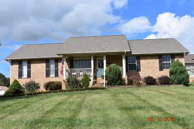 Maryville Single Family Home For Sale: 5550 Brandon Park Drive
