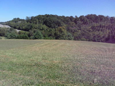 Jefferson City Residential Lots & Land For Sale: 766 Constitution