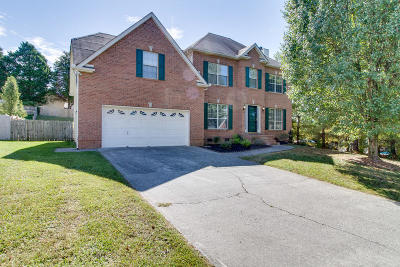 Powell Single Family Home For Sale: 1318 Wineberry Rd