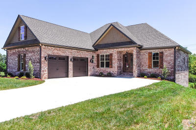 Maryville Single Family Home For Sale: 452 Holland Springs Drive